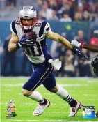 Danny Amendola New England Patriots Super Bowl 51 SATIN 8x10 Photo