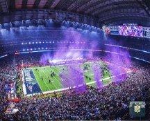 NRG Stadium New England Patriots Super Bowl 51 SATIN 8x10 Photo