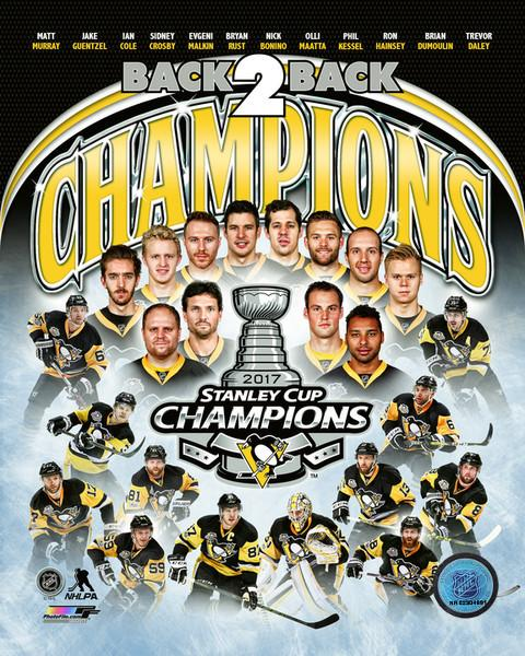 Penguins Team Composite 2017 Stanley Cup Champs Pittsburgh Penguins SATIN 8x10 Photo