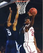 Buddy Hield Oklahoma / Sacramento Kings LIMITED STOCK SATIN 8X10 Photo