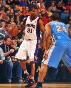Sebastian Telfair Phoenix Suns LIMITED STOCK 8X10 Photo