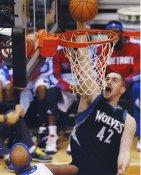 Kevin Love Minnesota Timberwolves LIMITED STOCK 8X10 Photo