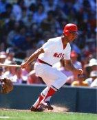 Fred Lynn Boston Red Sox 8x10 Photo