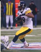 Willie Parker Pittsburgh Steelers 8X10 Photo