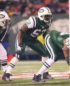 David Harris New York Jets Satin 8X10 Photo