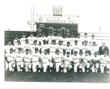 Phillies 1966 Philadelphia Phillies Team LIMITED STOCK 8x10 Photo