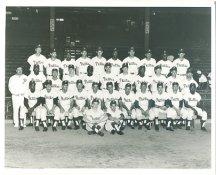 Phillies 1964 Philadelphia Phillies Team LIMITED STOCK 8x10 Photo