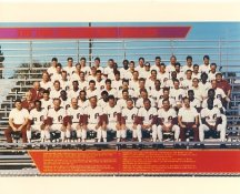 Phillies 1988 Philadelphia Phillies Team LIMITED STOCK 8x10 Photo