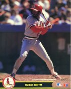 Ozzie Smith St. Louis Cardinals Glossy Card Stock 8X10 Photo