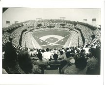 Polo Grounds ? San Francisco Giants LIMITED STOCK 8X10 Photo