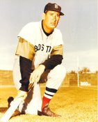 Ted Williams Boston Red Sox LIMITED STOCK 8x10 Photo