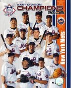 Mets 2006 East Division Champions LIMITED STOCK 8X10 Photo