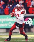 Brandon Doughty Western Kentucky University LIMITED STOCK Satin 8x10 Photo
