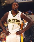 Lance Stevenson Indiana Pacers LIMITED STOCK Satin 8X10 Photo