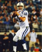 Peyton Manning Indianapolis Colts LIMITED STOCK Satin 8X10 Photo