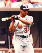 Felix Jose St Louis Cardinals LIMITED STOCK 8X10 Photo