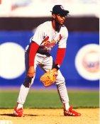 Ozzie Smith St. Louis Cardinals LIMITED STOCK 8X10 Photo