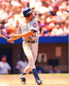Mark Grace ? Chicago Cubs LIMITED STOCK 8X10 Photo
