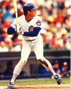 Ryne Sandberg ? Chicago Cubs LIMITED STOCK 8X10 Photo