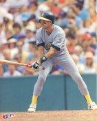 Walt Weiss Slight Corner Crease Oakland Athletics 8X10 Photo SUPER SALE