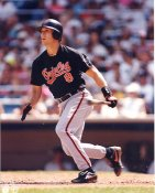 Cal Ripken Jr. Baltimore Orioles LIMITED STOCK 8X10 Photo