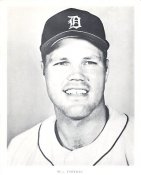 Bill Freehan Detroit Tigers LIMITED STOCK 8X10 Photo