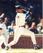 Jeff Blauser Chicago Cubs LIMITED STOCK 8X10 Photo