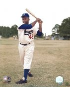 Jackie Robinson Brooklyn Dodgers LIMITED STOCK 8X10 Photo