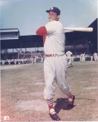 Stan Musial St. Louis Cardinals NO HOLOGRAM LIMITED STOCK 8X10 Photo