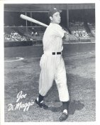 Joe DiMaggio New York Yankees LIMITED STOCK 8X10 Photo