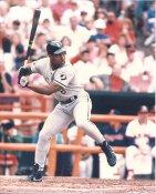 Bo Jackson Chicago White Sox LIMITED STOCK 8x10 Photo