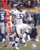 Ray Lewis Baltimore Ravens Slight Corner Crease SUPER SALE 8X10 Photo