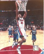Theo Ratliff Detroit Pistons LIMITED STOCK 8X10 Photo