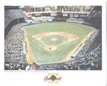 Yankee Stadium New York Yankees America's Baseball Temples LIMITED STOCK 8X10 Photo Litho