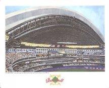 The Skydome Toronto Blue Jays America's Baseball Temples LIMITED STOCK 8X10 Photo Litho