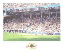 Tiger Stadium Detroit Tigers America's Baseball Temples LIMITED STOCK 8X10 Photo Litho
