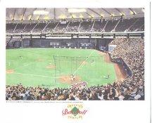 Hubert H. Humphrey Metrodome Minnesota Twins America's Baseball Temples LIMITED STOCK 8X10 Photo Litho