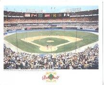 Atlanta-Fulton County Stadium Atlanta Braves America's Baseball Temples LIMITED STOCK 8X10 Photo Litho