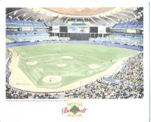Olympic Stadium Montreal Expos America's Baseball Temples LIMITED STOCK 8X10 Photo Litho
