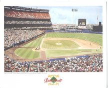 Shea Stadium New York Mets America's Baseball Temples LIMITED STOCK 8X10 Photo Litho