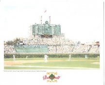 Wrigley Field Chicago Cubs America's Baseball Temples LIMITED STOCK 8X10 Photo Litho