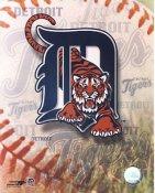 Detroit Tigers Baseball Logo LIMITED STOCK 8X10 Photo