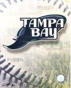 Tampa Bay Devil Rays Baseball Logo LIMITED STOCK 8X10 Photo