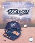 Toronto Blue Jays Baseball Logo LIMITED STOCK 8X10 Photo