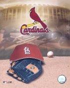 St. Louis Cardinals Baseball Logo LIMITED STOCK 8X10 Photo