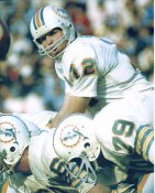Bob Griese Miami Dolphins LIMITED STOCK Satin 8X10 Photo