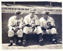 Woody English, Dizzy Dean & Charlie Root 1932 Chicago Cubs LIMITED STOCK 8X10 Photo