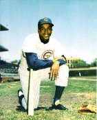 Ernie Banks Chicago Cubs LIMITED STOCK 8X10 Photo