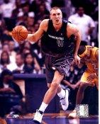 Dirk Nowitzki Dallas Mavericks Slight Corner Crease SUPER SALE 8X10 Photo