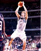Dirk Nowitzki Dallas Mavericks LIMITED STOCK 8X10 Photo